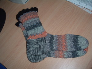 Sock_pal_socks_fo_100905_1